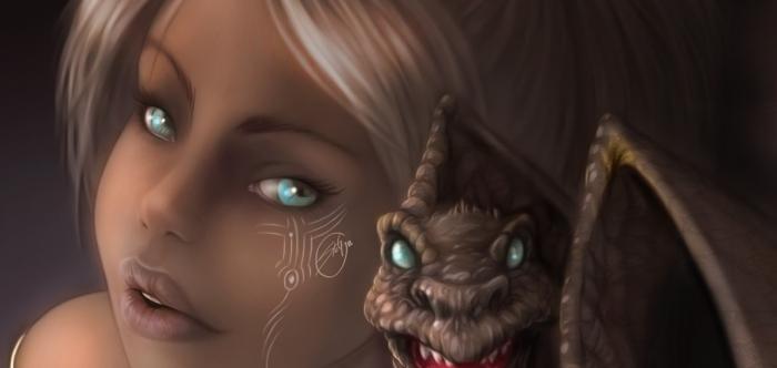 my_dragon_banner_stegart