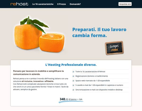 hosting--professionale