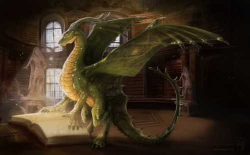 dragons-library-1024x637